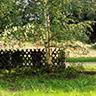 mazurski ogród mazury z psem